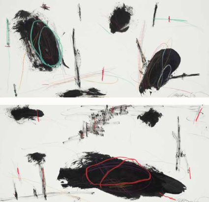 Graham Kuo, Black and White with Colour Lines 2009 ink and pastel on paper 27cm x 57cm each