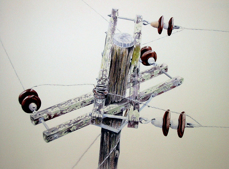 Bev Cozad-Bush, Electric 16 - Power pole along Webbers Creek Rd, Paterson, 2005 Watercolour on Arches paper 48 x 36 cm, On loan from PowerServe