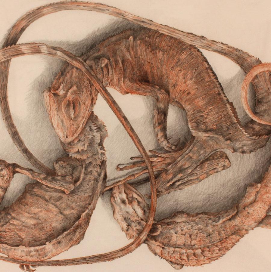 Trevor Weekes, Three Dragons (detail), 2011, mixed media, 63 x 86 cm
