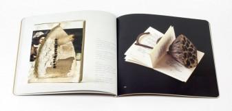 Cutting through: the art of Elisabetta Gut