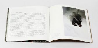 Framing time, telling stories: the fascinating art of Michael Platt