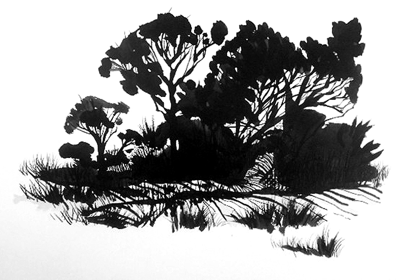 Andy Devine, HE17, (Hill End), 2013, Ink on 310 gsm Lithograph paper, 35.5 x 25.5 cm