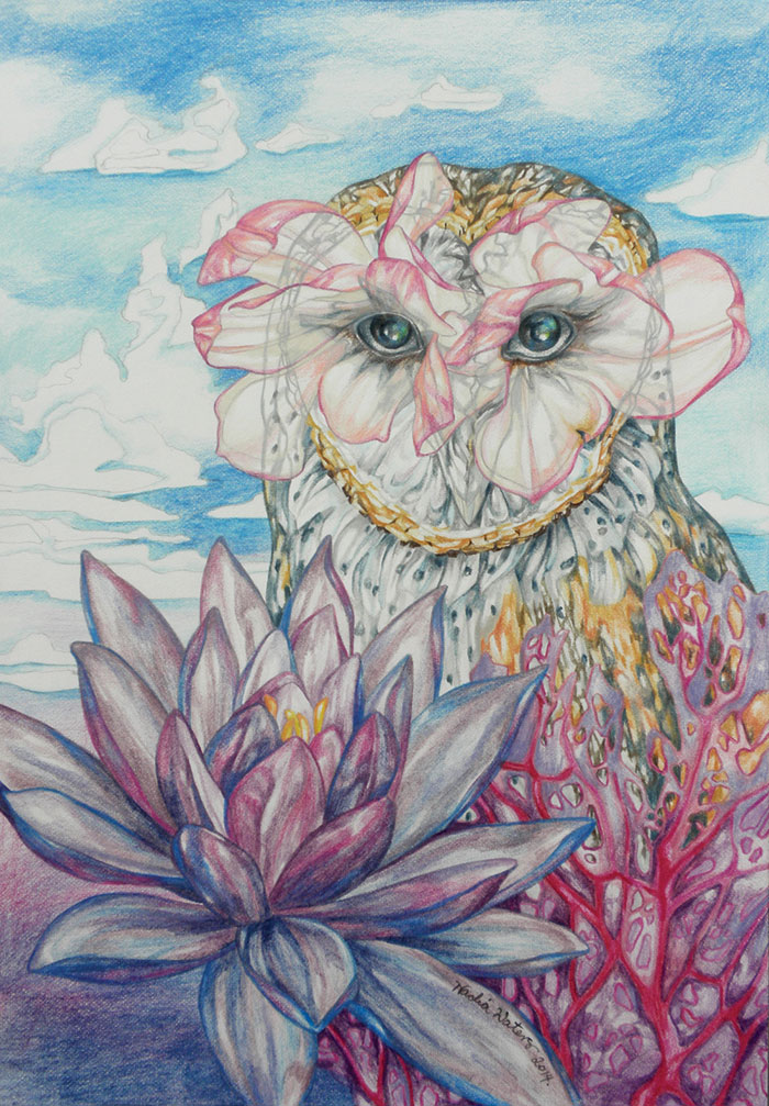 Nadia Waters, Violet (detail), 2014, coloured pencil on paper, 29 x 21 cm
