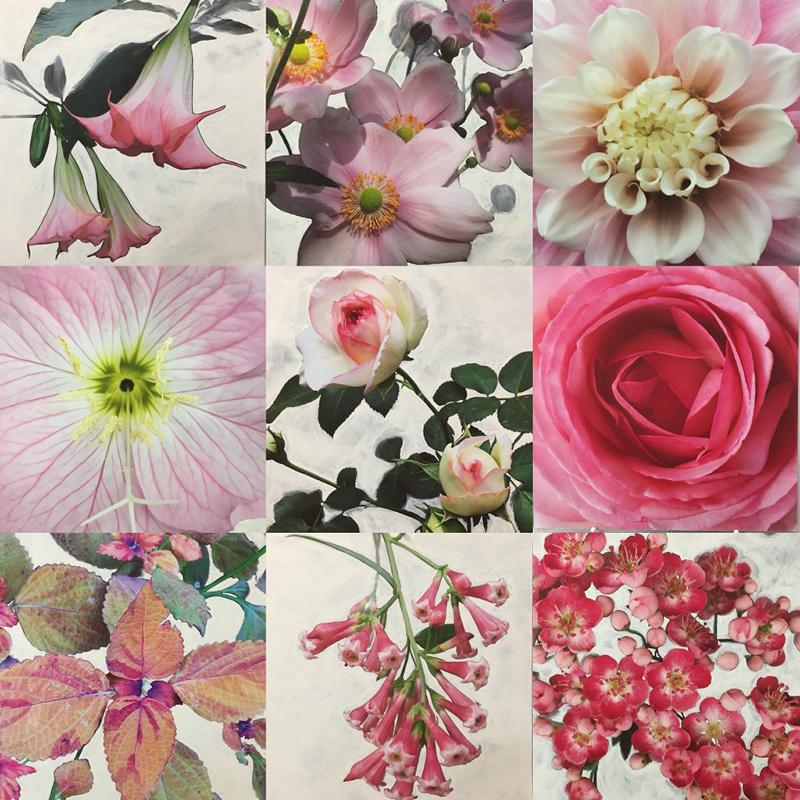Nicola Bolton, The Garden Palette (detail), 2018, digital print on matt paper with gouache and coloured pencil, 19.5 x 19.5cm each